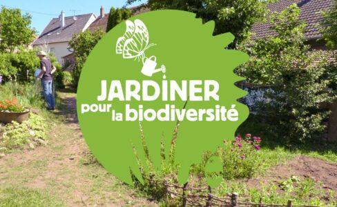 La nature grande gagnante du concours Jardiner pour la biodiversité