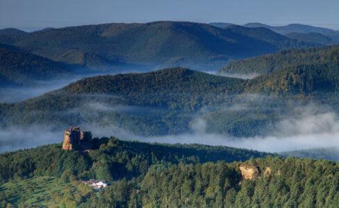 Investir le tourisme durable comme un champ d'innovation