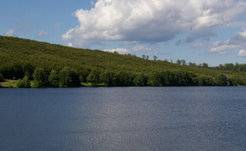 La réserve naturelle régionale de Reichshoffen