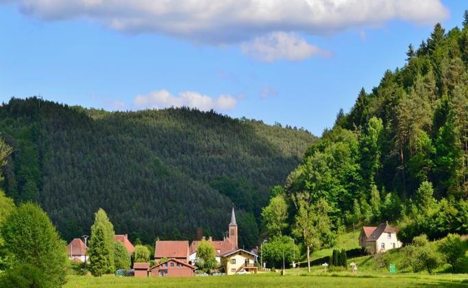 L'abbaye cistercienne de Sturzelbronn