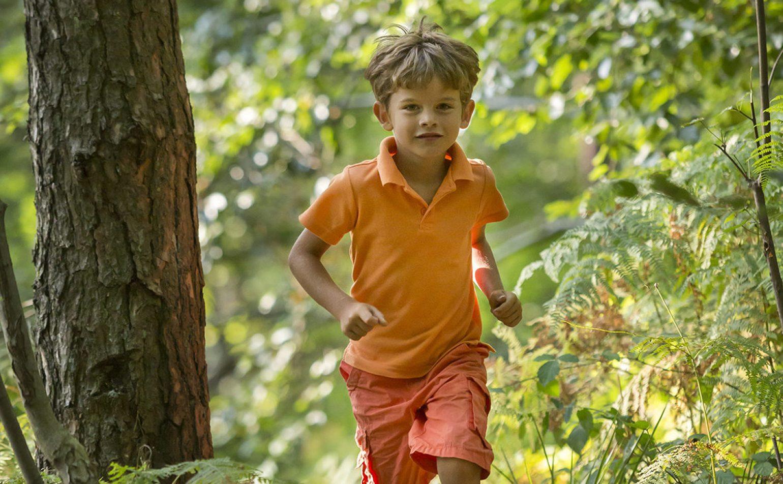 Enfant des bois
